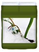 Scilla On Snow Duvet Cover