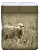 Sheep In A Meadow Duvet Cover