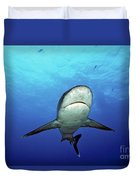 Silvertip Shark Duvet Cover