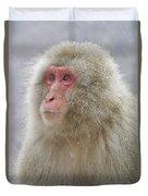 Snow-dusted Monkey Duvet Cover