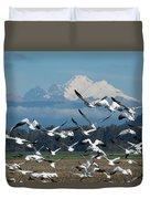 Snow Geese In Skagit Valley Duvet Cover