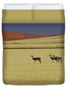 Springbok At Sossusvlei Duvet Cover