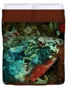 Stop Light Parrot Fish Duvet Cover