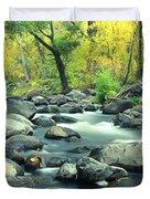 Stream In Cottonwood Canyon, Sedona Duvet Cover
