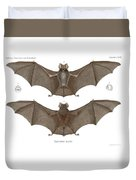 Sundevall's Roundleaf Bat Duvet Cover