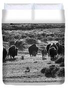 Sunset Bison Stroll Black And White Duvet Cover