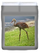 Sweet Juvenile Sandhill Crane Duvet Cover