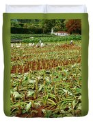 Taro Field Duvet Cover