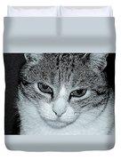 The Cat's Innocense Duvet Cover