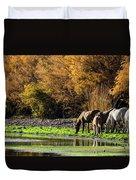 The Salt River Wild Horses  Duvet Cover