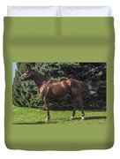 Thoroughbred Stallion Duvet Cover