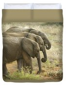 Three In A Row Duvet Cover