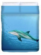 three year old Dolphin  Duvet Cover