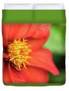 Tithonia Rotundifolia, Red Flower Duvet Cover