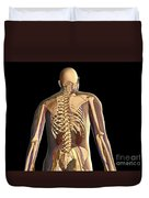 Transparent View Of Human Body Showing Duvet Cover