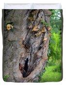 Tree Bark Detail, Natural Background. Duvet Cover