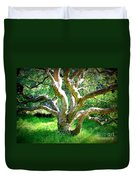 Tree In Golden Gate Park Duvet Cover
