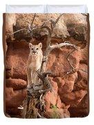 Treed Mountain Lion Duvet Cover