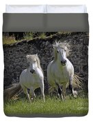 Two Highland Ponies. Duvet Cover