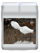 Two Snowy Egrets Duvet Cover