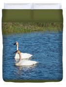 Two Swans Duvet Cover