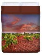 Vineyards At Sunset Duvet Cover