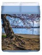 Washington Monument Cherry Blossoms Duvet Cover