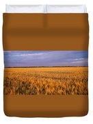 Wheat Crop In A Field, North Dakota, Usa Duvet Cover
