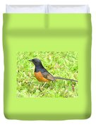 White-rumped Shama Duvet Cover