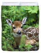 White-tailed Deer Odocoileus Duvet Cover