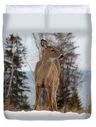 White-tailed Deer Three Duvet Cover
