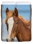Wild Foal Duvet Cover