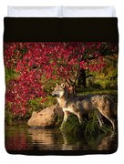 Wolf Portrait In Fall Duvet Cover