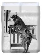 Wwi, Sergeant Stubby, American War Dog Duvet Cover