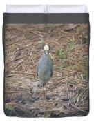 Yellow Crowned Night Heron At Tidal Creek Duvet Cover