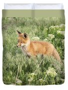 Young Red Tailed Fox Duvet Cover