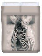 Zebra Colt In Spring Duvet Cover