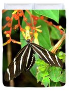 Zebra Longwing On Firebush  Duvet Cover