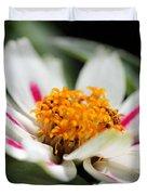 Zinnia Named Zahara Starlight Rose Duvet Cover