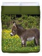 Miniature Donkey Foal Duvet Cover