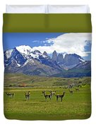 Springtime In Torres Del Paine Duvet Cover
