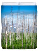 Vast Scenic Montana State Landscapes And Nature Duvet Cover