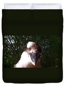Australia - Kookaburra Looking Right At You Duvet Cover