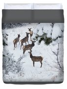 Elk In Deep Snow In The Pike National Forest Duvet Cover