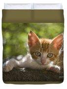 Kitten On A Wall Duvet Cover