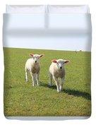 Sheep Duvet Cover