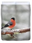 Eurasian Bullfinch In Winter Duvet Cover