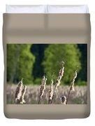 Sedge Warbler Duvet Cover