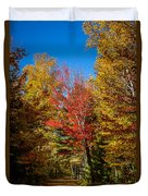 Autumn Season In Killarney Duvet Cover