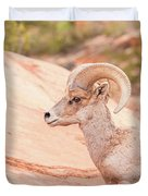 Desert Bighorn Ram Duvet Cover